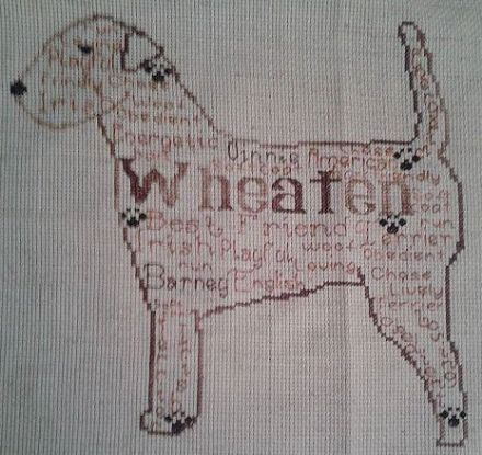 Wheaten Terrier In Words